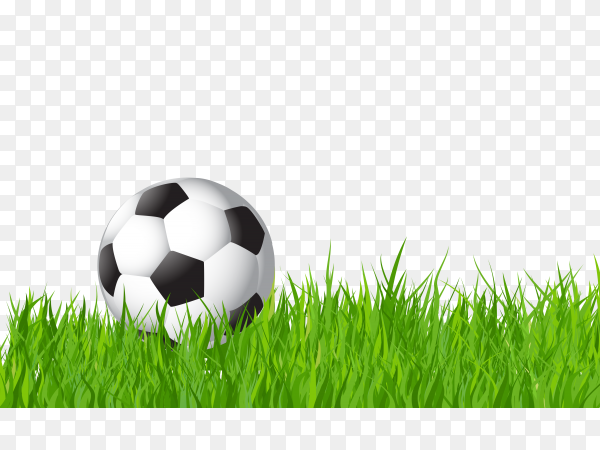 Football on Green grass on transparent background PNG
