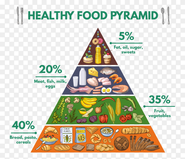 Healthy food pyramid chart on transparent background PNG