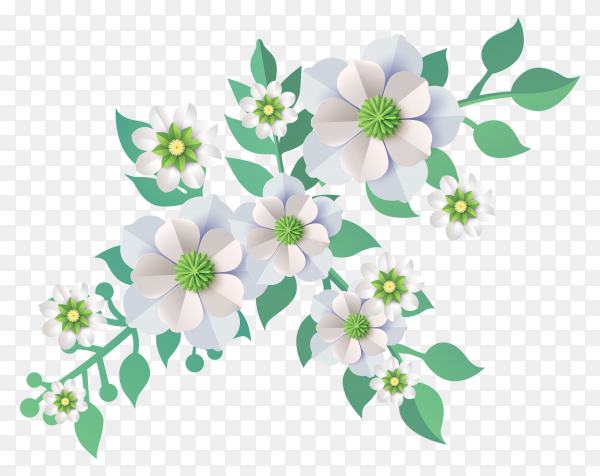 Beautiful Flowers on transparent background PNG