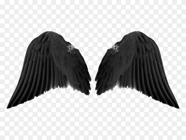 Black angel wings isolated on transparent background PNG