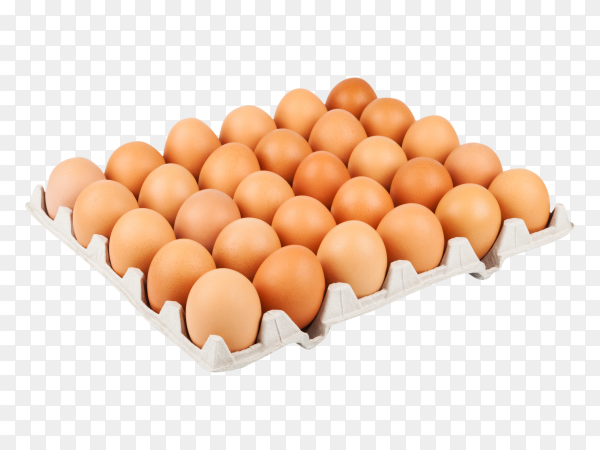Chicken eggs in a cardboard tray on transparent background PNG