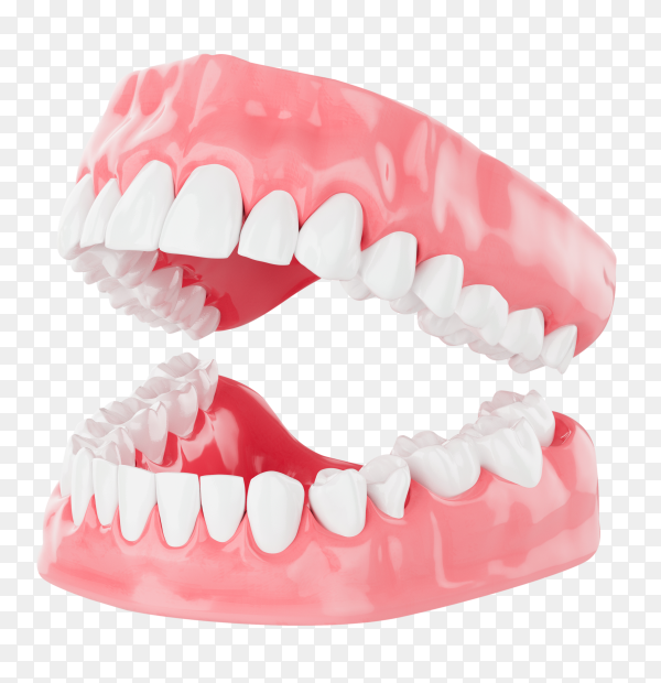 Close up beauty teeth health care on transparent backgrond PNG