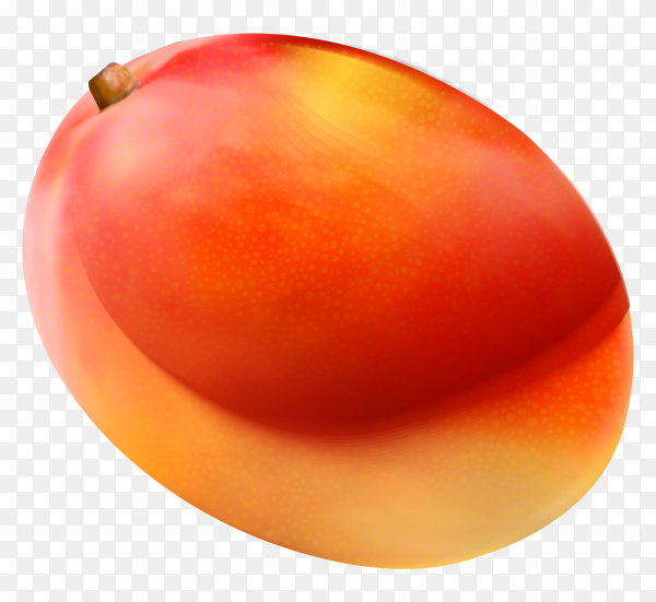 Delicious mango on transparent background PNG