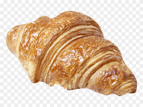 Fresh croissant on transparent background PNG