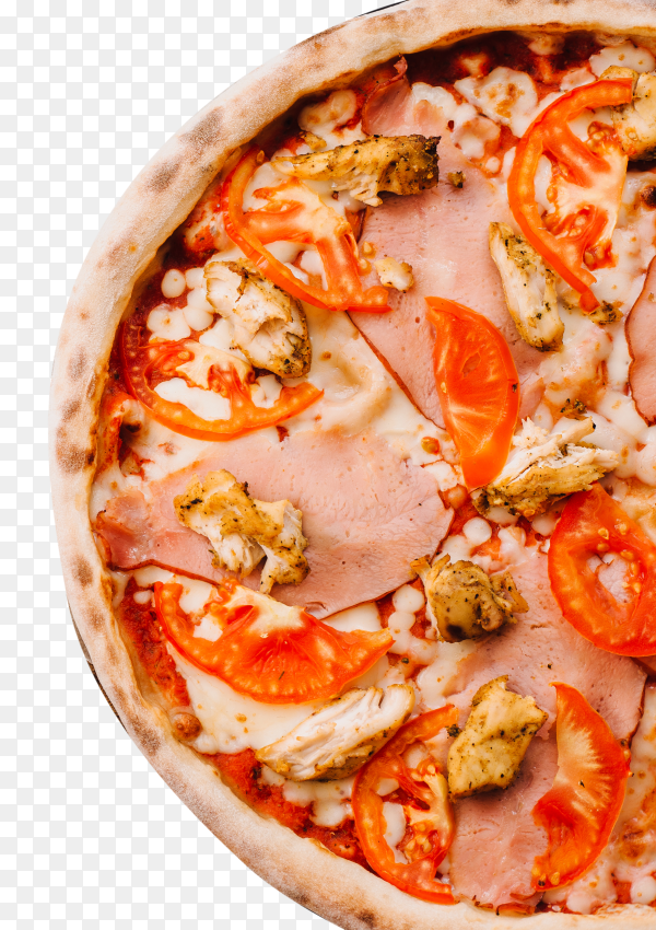 Tasty italian pizza on transparent background PNG