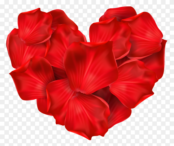 Red heart shape flowers premium vector PNG