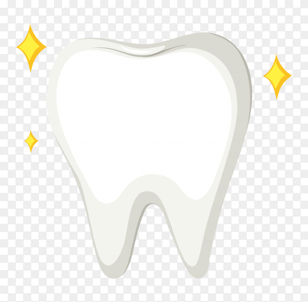 Teeth isolated on transparent background PNG