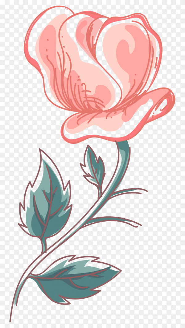 Beautiful flowers isolated on transparent background PNG