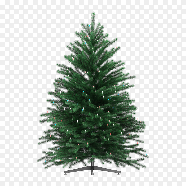 Christmas tree isolated clipart PNG
