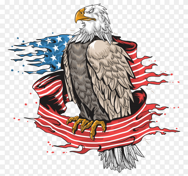 Eagle use army art on transparent background PNG