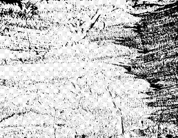Grunge black and white texture on transparent background PNG