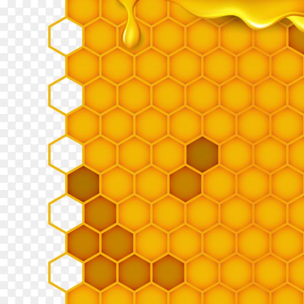 Honeycomb in orange color on transparent background PNG