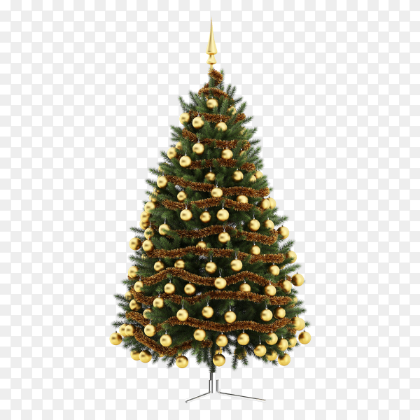 Realistic Christmas tree on transparent background PNG