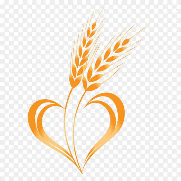 Wheat in heart shape isolated on transparent background PNG