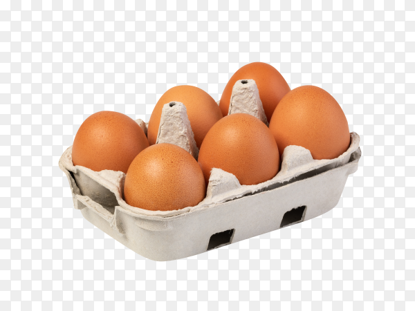 Chicken eggs in carton box on transparent background PNG