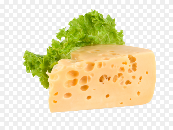 Delicious piece of cheese on transparent background PNG
