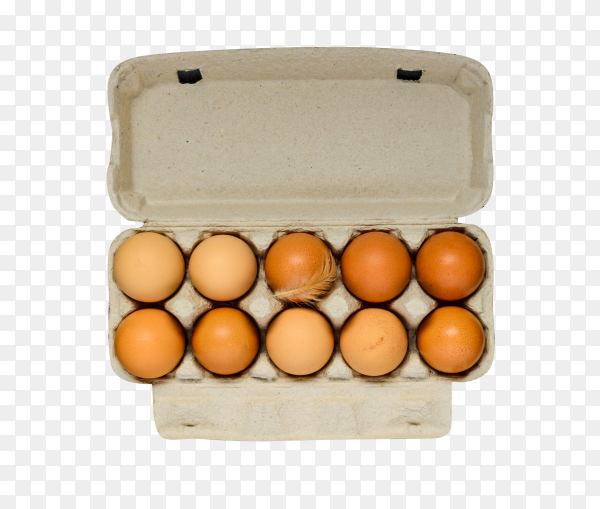 Fresh eggs in package on transparent background PNG