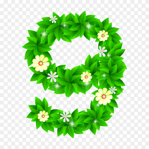 Number Nine of the green and white flowers isolated on transparent background PNG