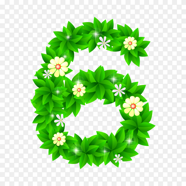 Number Six of the green and white flowers isolated on transparent background PNG