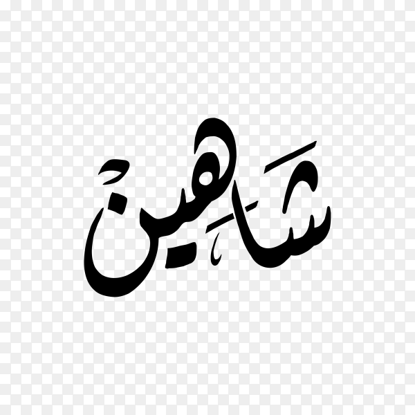 Shaheen Name with Arabic calligraphy on transparent background PNG