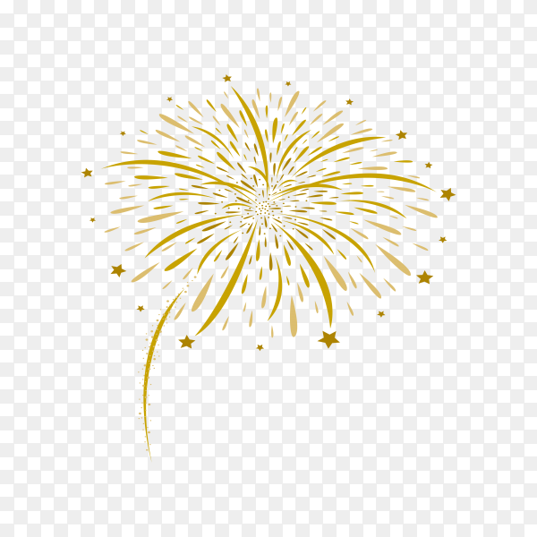 Abstract firework and stars on transparent background PNG