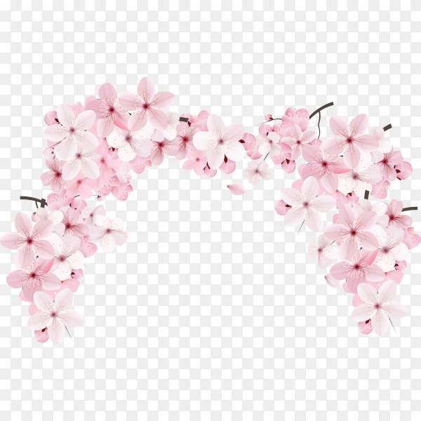 Realistic beautiful sakura branches flowers and petals illustration on transparent background PNG
