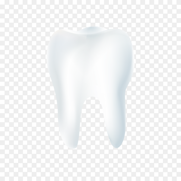 Clean and strong white tooth on transparent background PNG.png