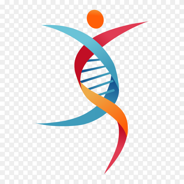DNA, genetic symbol – people, man and woman icon premium vector PNG