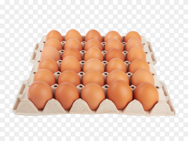 Eggs carton isolated on transparent background PNG