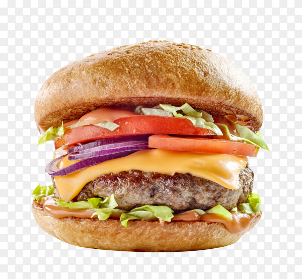 Fresh tasty burger, isolated on transparent background PNG