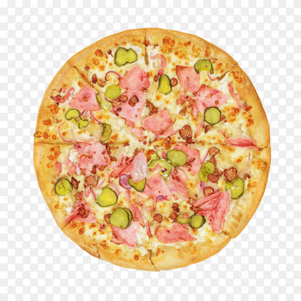 Fresh tasty pizza on transparent background PNG