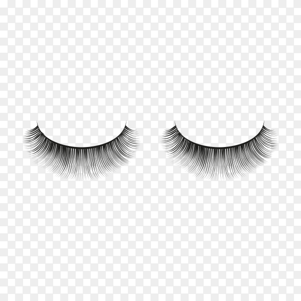 Realistic fake eyelashes isolated premium vector PNG