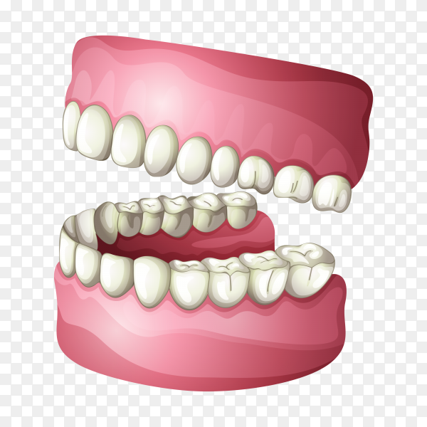 Teeth design template on transparent background PNG