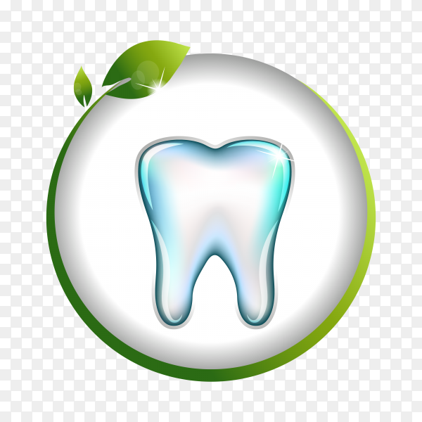 Tooth Dentistry isolated on transparent background PNG.png
