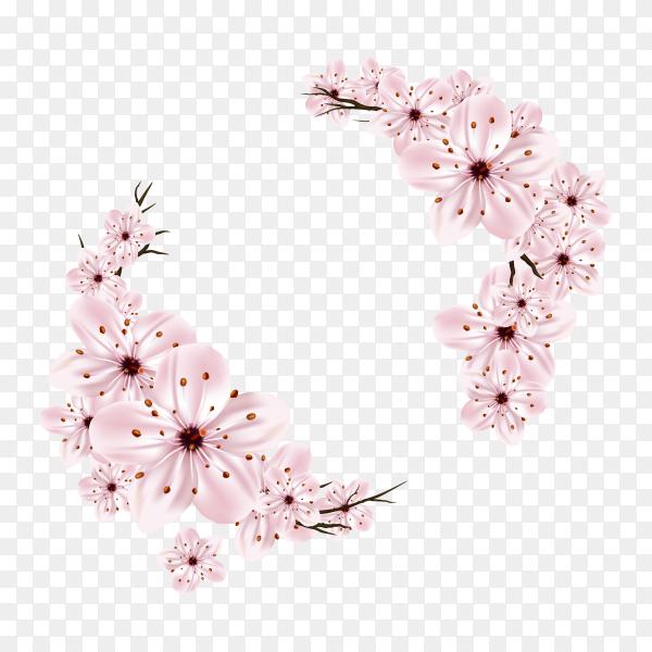 Cherry blossom frame on transparent background PNG