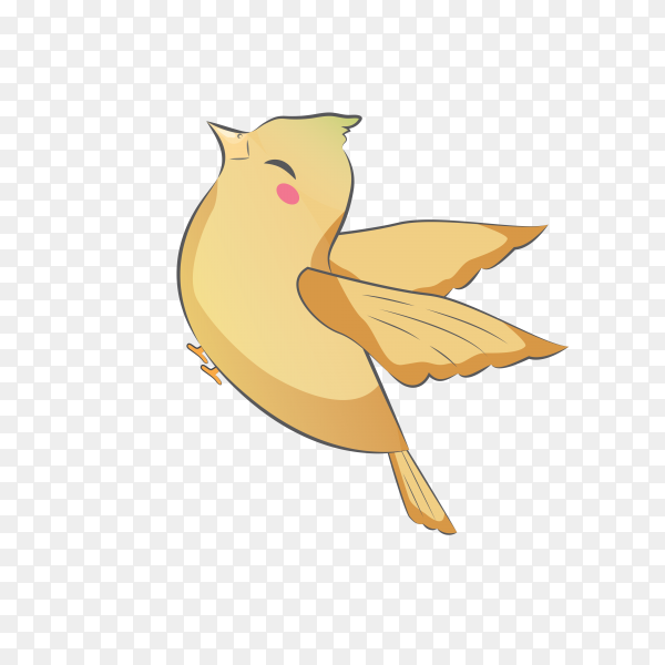 Hand drawn bird on transparent background PNG