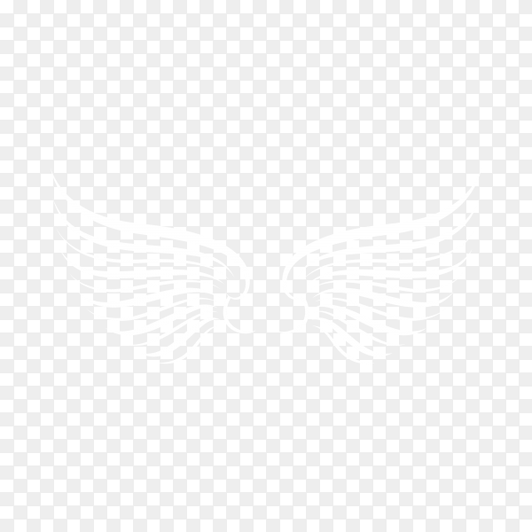 Hand drawn bird or angel wings on transparent background PNG