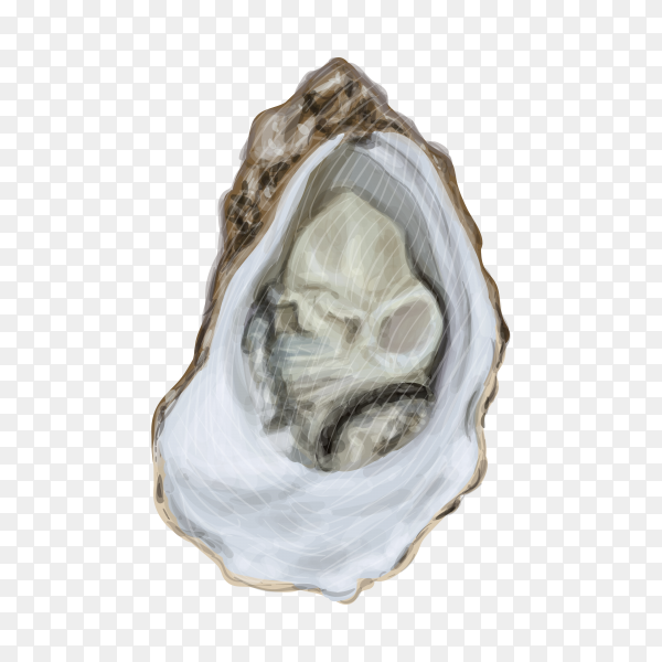 Seafood illustration premium vector PNG