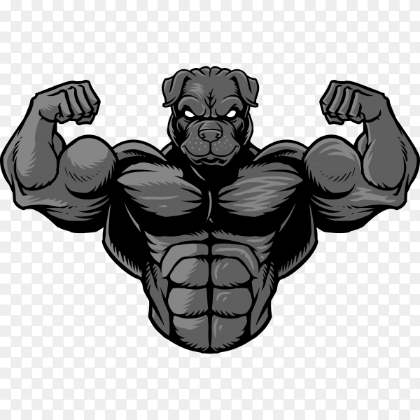 Strong bulldog isolated on transparent background PNG