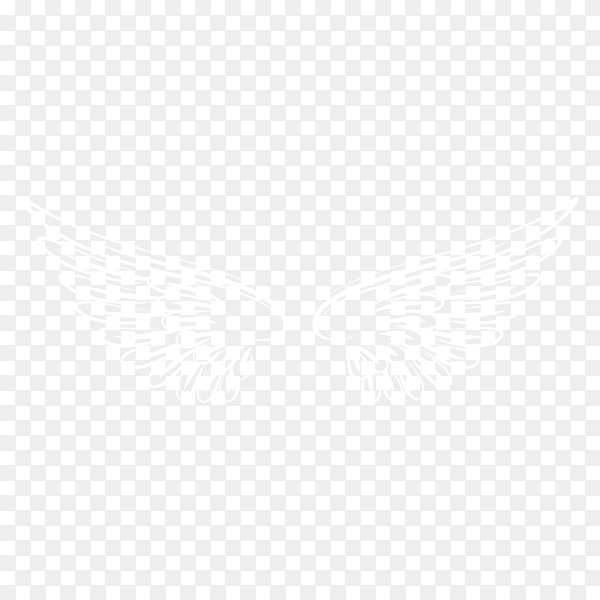 White bird wings illustration on transparent background PNG