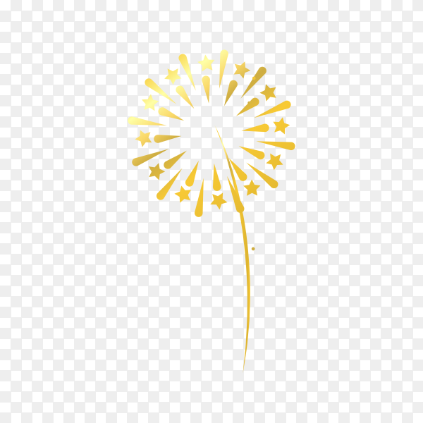 Fireworks isolated on transparent background PNG