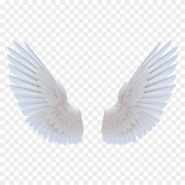 Realistic white wings on transparent background PNG