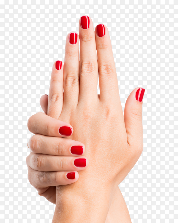 Closeup photo of a female hands with red nails on transparent background PNG