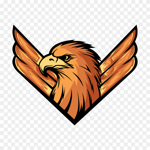 Eagle bird mascot e sport logo design on transparent background PNG