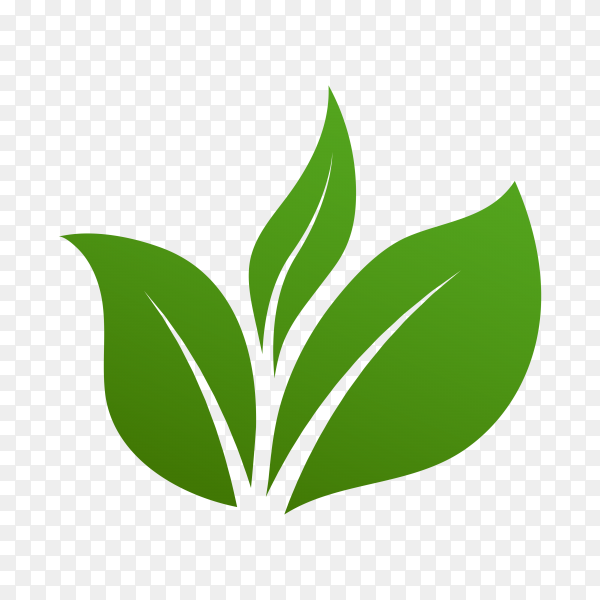 Green leaves logo. plant nature Eco garden stylized icon isolated on transparent background PNG