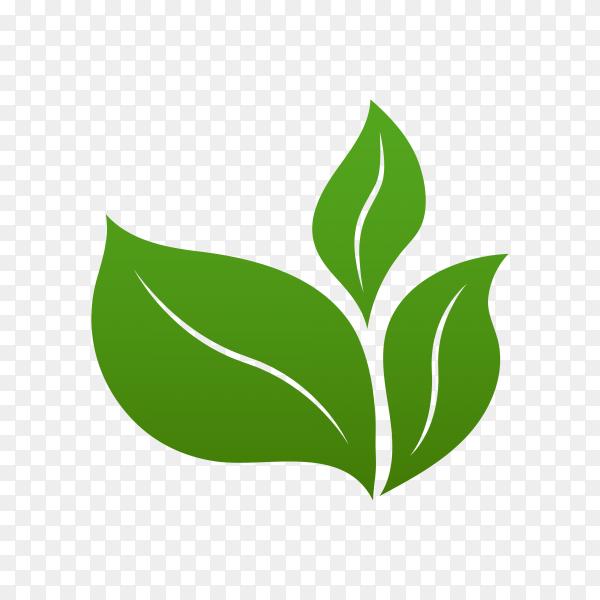 Green leaves logo design on transparent background PNG