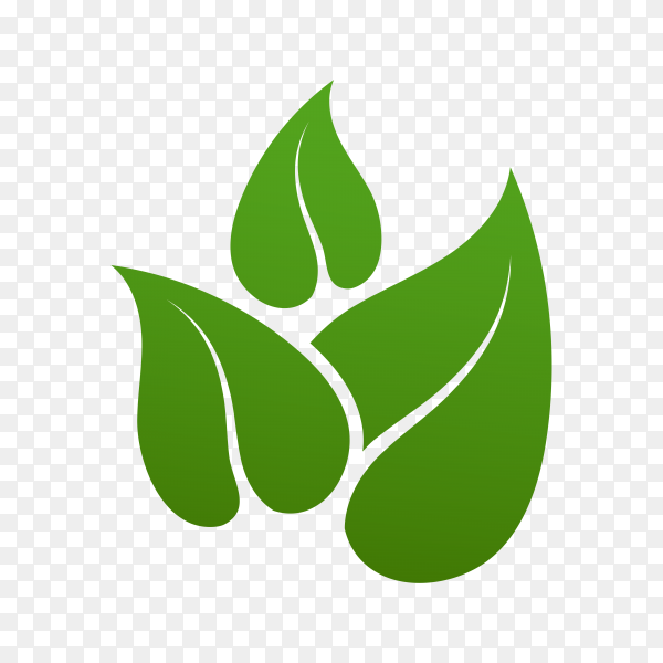 Green leaves logo isolated on transparent background PNG