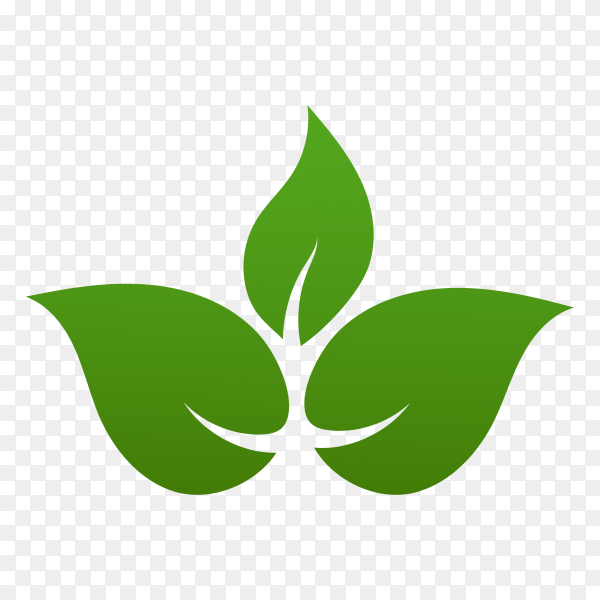 Green leaves logo. plant nature Eco garden stylized icon illustration on transparent background PNG
