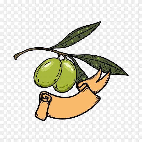 Olive oil logo design template on transparent background PNG