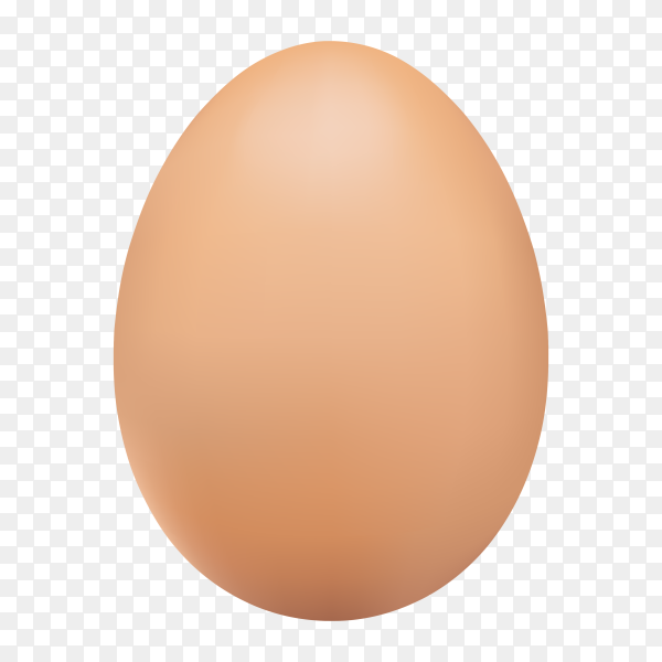 Realistic chicken brown egg on transparent background PNG